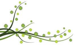 вектор illu предпосылки флористический Стоковое Изображение