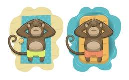 Вектор monkeys ослаблять на тропическом пляже Стоковое Изображение