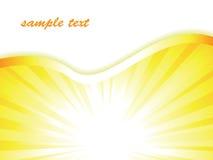 вектор sunburst дела предпосылки Стоковая Фотография