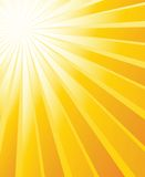 вектор sunburst предпосылки Стоковое Изображение