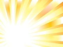вектор sunburst Стоковые Изображения
