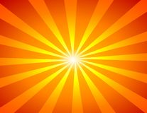 вектор sunburst Стоковое Фото