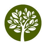 Вектор tree-21 Стоковое Изображение