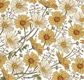 Вектор Wildflowers травы стоцвета Чертеж, гравировка Цветки красивой винтажной предпосылки зацветая белые желтые реалистические иллюстрация штока