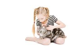 великобританская девушка кота представляя детенышей shorthair Стоковые Изображения