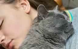 Великобританский кот коротких волос спать с девушкой стоковые изображения