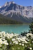 великобританское озеро Канады columbia изумрудное обнаружило местонахождение yoho национального парка Стоковое Изображение