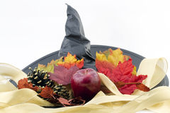 великолепие halloween Стоковое фото RF