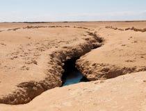 великолепная земля s коркы Стоковое Фото