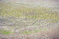 Великолепная почва на влиянии глобального потепления засушливого сезона Стоковая Фотография