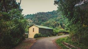 Великолепный дом в лесе стоковое изображение rf
