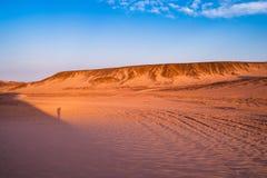 Великолепный заход солнца пустыни стоковое изображение