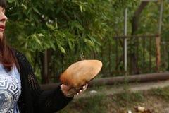 Величайте с бабочкой на ей в руке девушки стоковая фотография rf