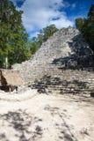 Величественные руины в Coba, Мексике стоковая фотография rf
