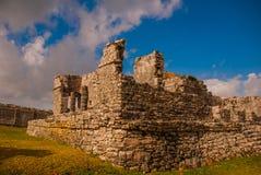 Величественные руины в Tulum, Юкатане, Мексике Tulum место пре-колумбийского майяского огороженного города стоковые изображения