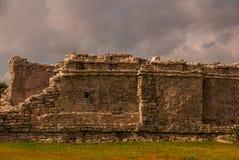 Величественные руины в Tulum, Юкатане, Мексике Tulum место пре-колумбийского майяского огороженного города стоковые изображения rf