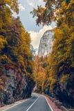 Величественный пейзаж горы дорога в горах, накаляя в sunligh Горы Румынии прикарпатские Каньон Bicaz, Cheile Bicazului стоковое фото rf