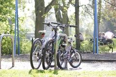 3 велосипеда для всей семьи Стоковые Фотографии RF
