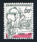 велосипедиста Стоковая Фотография RF
