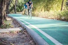 Велосипедисты на майне велосипеда в парке стоковые изображения