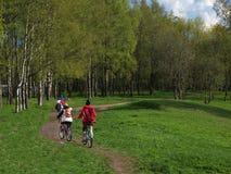Велосипедисты семьи на прогулке в парке стоковая фотография rf
