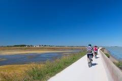 Велосипедисты Ile de Ré на дорогах Стоковое Изображение