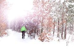 Велосипедист велосипедиста снега в зеленом цвете едет bi по пересеченной местностей горы снега Стоковое фото RF