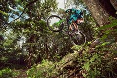 Велосипедист горного велосипеда делая эффектное выступление wheelie на велосипеде mtb Стоковое Изображение