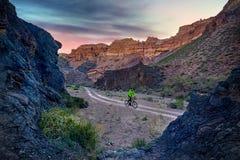 Велосипедист горы на пустыне Стоковое Фото