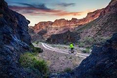 Велосипедист горы на пустыне стоковое фото rf