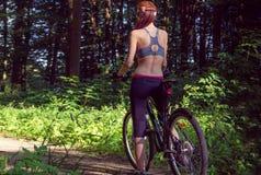 Велосипедист девушки на горном велосипеде в лесе Стоковое Изображение