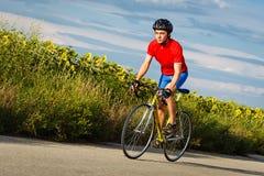 Велосипедист едет на велосипеде дороги вдоль полей солнцецветов Стоковая Фотография