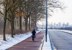 Велосипедист задействуя на дороге во время сезона зимы в Нидерланд стоковое фото rf
