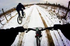 Велосипедист Стоковые Фотографии RF