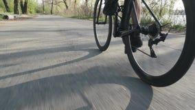 Велосипедист pedaling на велосипеде назад следовать съемкой Закручивать колеса велосипеда Дорога задействуя в парке города ( акции видеоматериалы