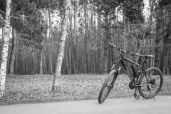 Велосипед в природе в черно-белом Стоковое Изображение