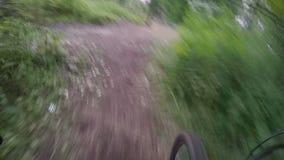 Велосипед езда вдоль тинного пути в лесе акции видеоматериалы