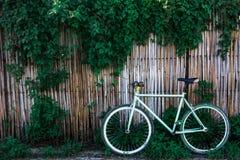 Велосипед и старая бамбуковая загородка на предпосылке Стоковые Изображения
