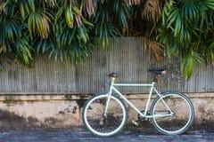 Велосипед и старое волнистое железо загородки с листьями, которые как предпосылка Стоковые Изображения RF