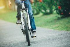 Велосипед катания велосипедиста в парке Стоковая Фотография