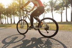 велосипед катания велосипедиста в тропическом парке Стоковое Изображение