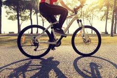 велосипед катания велосипедиста в тропическом парке Стоковая Фотография