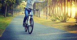 велосипед катания велосипедиста в тропическом парке Стоковое фото RF