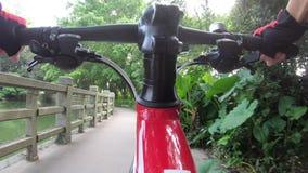 Велосипед катания женщины на следе в парке