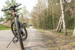 Велосипед на дороге леса Стоковая Фотография