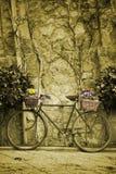 велосипед образовывает сбор винограда цветков Стоковое Фото