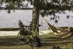 Велосипед около сосны на речном береге, велосипедисте отдыхая в гамаке стоковые фото