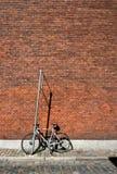 велосипед около стены Стоковое фото RF