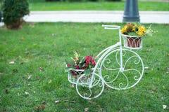Велосипед цветка на саде стоковая фотография rf