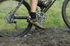 велосипедист действия Стоковое Изображение RF
